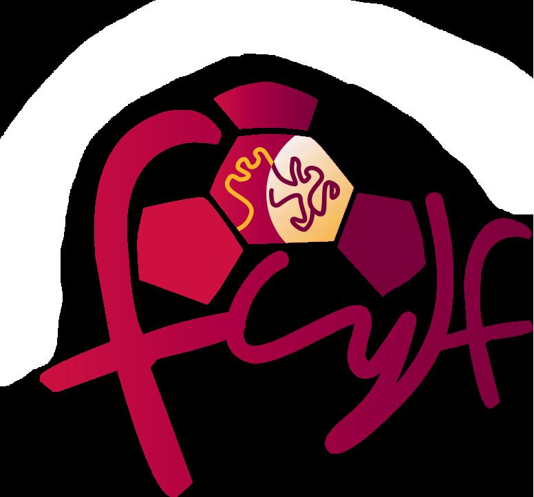 Federación de Castilla y León de Fútbol