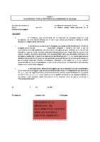 Modelo Declaración Credencial Delegado 18-19